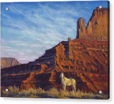 Mustang Ridge Monument Valley Az Acrylic Print