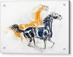 Mustangs Acrylic Print by Kurt Tessmann