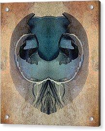 Mutation Acrylic Print by WB Johnston
