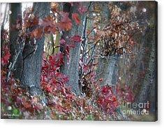My Autumn Nostalgia. Acrylic Print by  Andrzej Goszcz
