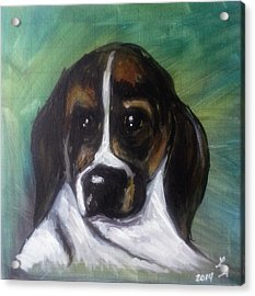 My Brother's Dog Acrylic Print