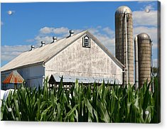 My Favorite Barn In Summer Acrylic Print