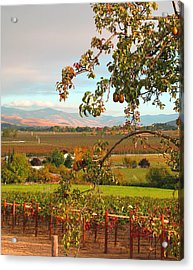 My Favorite Valley View - Autumn In Southern Oregon Acrylic Print
