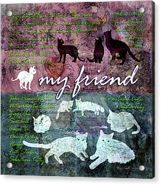 My Friend Cats Acrylic Print by Evie Cook