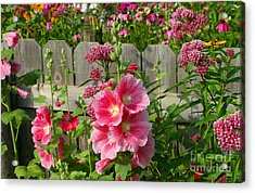Acrylic Print featuring the photograph My Garden 2011 by Steve Augustin