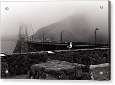 Acrylic Print featuring the photograph My Golden Gate...... by Tanya Tanski