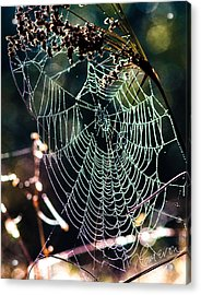 My Jewelry Acrylic Print
