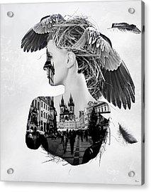 My Nest Acrylic Print by Bojan Jevtic