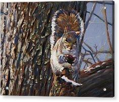 My Nut Acrylic Print by Christopher Reid