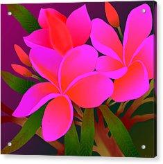 Acrylic Print featuring the digital art My Pink Plumerias by Latha Gokuldas Panicker    ker