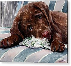 My Rope Toy Acrylic Print by Molly Poole