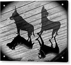 My Shadows Acrylic Print by Rita Mueller