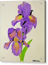 My Sweet Iris Acrylic Print