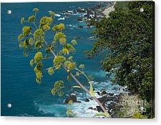 My Taormina's Landscape Acrylic Print