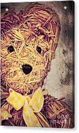 My Teddy Bear Acrylic Print by Angela Doelling AD DESIGN Photo and PhotoArt