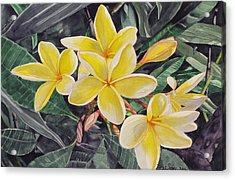 Acrylic Print featuring the painting My Trubute To Marita by Debi Singer