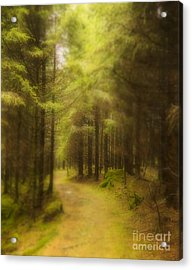 My Way Acrylic Print