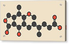 Mycophenolate Or Mycophenolic Acid Drug Acrylic Print by Molekuul