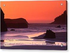 Myers Creek Sunset Acrylic Print