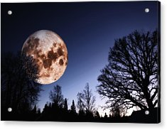 Mysterious Full Moon Rising Over Forest Acrylic Print