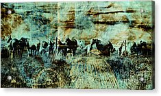 Mystery Herd Acrylic Print by Judy Wood