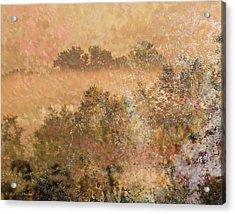 Mystery Swamp Sunrise Acrylic Print by J Larry Walker