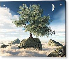 Mystery Tree Acrylic Print by Eric Nagel