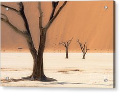 Acrylic Print featuring the photograph Mystic Africa by Juergen Klust