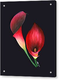 Mystic Calla Lillies Acrylic Print by Mary Gaines