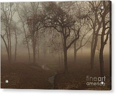 Mystic Forest 004 Acrylic Print