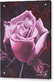 Mystic Rose Acrylic Print