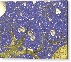 Mystic Stars Acrylic Print by Mick Hogan