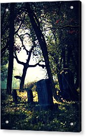 Acrylic Print featuring the photograph Mystical Fantasies by Melanie Lankford Photography