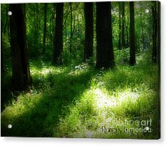 Mystical Forest Acrylic Print by Lorraine Heath