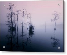 Mystical Morning On The Lake Acrylic Print