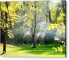 Acrylic Print featuring the photograph Mystical Parkland by Nina Silver