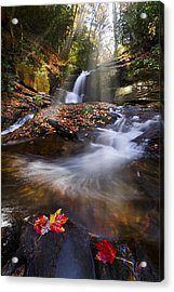 Mystical Pool Acrylic Print by Debra and Dave Vanderlaan