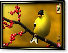 N. American Male Goldfinch Acrylic Print