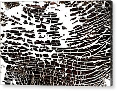 Na 4 Wave Acrylic Print by Kika Pierides