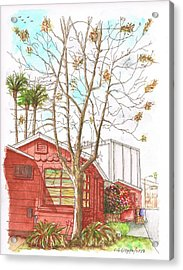 Naked Tree And Brown House In Cahuenga Blvd., Hollywood, California Acrylic Print by Carlos G Groppa