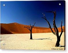 Namibia Acrylic Print by Riana Van Staden