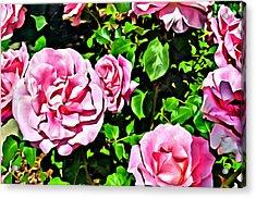 Nana's Roses Acrylic Print