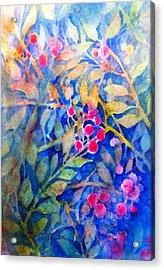Nandina Acrylic Print by Cynthia Roudebush