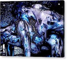 Nano Molto Acrylic Print by Bob Bienpensant