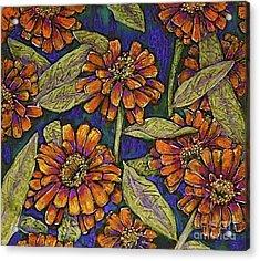 Nazinnias Acrylic Print by Linda Simon