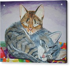 Acrylic Print featuring the painting Nap Time by Thomas J Herring