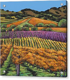 Napa Acrylic Print by Johnathan Harris