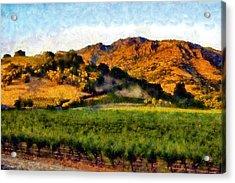 Napa Valley Acrylic Print