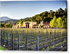 Napa Valley Spring Sunset Acrylic Print by George Oze