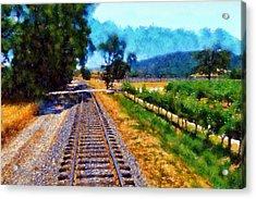 Napa Valley Tracks Acrylic Print by Kaylee Mason